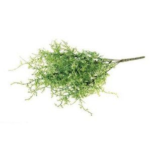 "Fine Grass Botanical 16"" Spray"